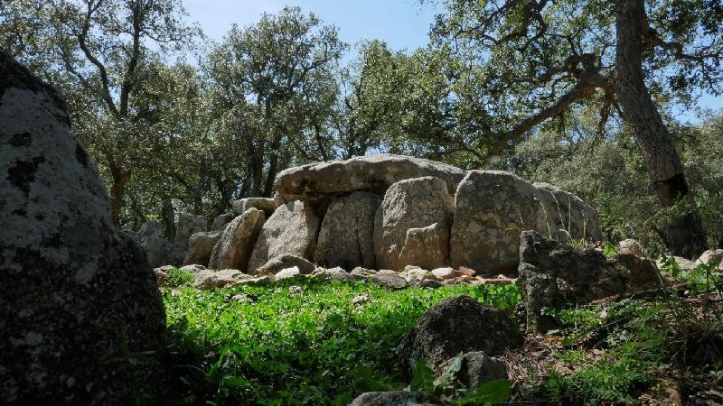 Dolmen de la Cova d'en Daina. Fotografia: www.visitsantacristina.cat